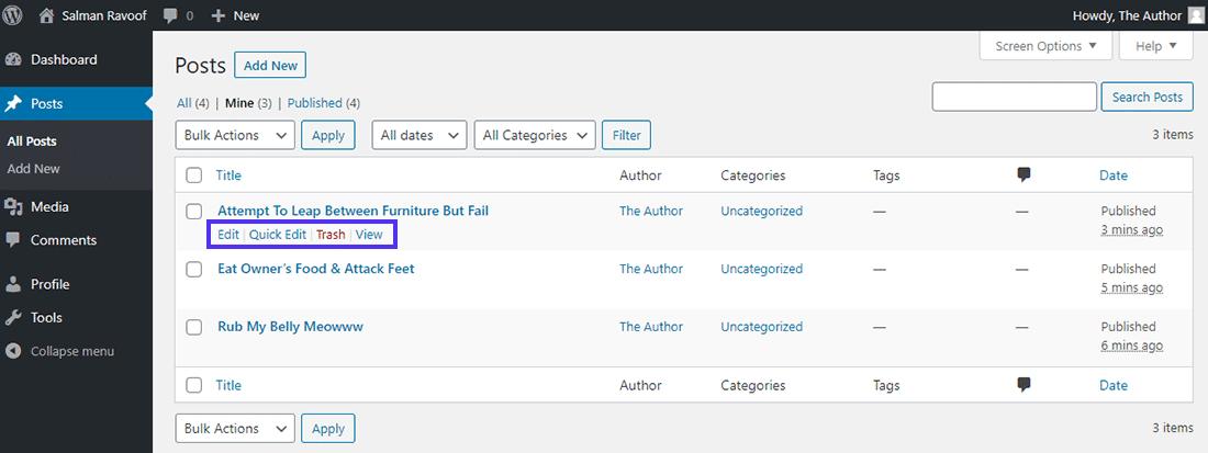 Os autores têm permissão para apagar suas postagens publicadas por padrão