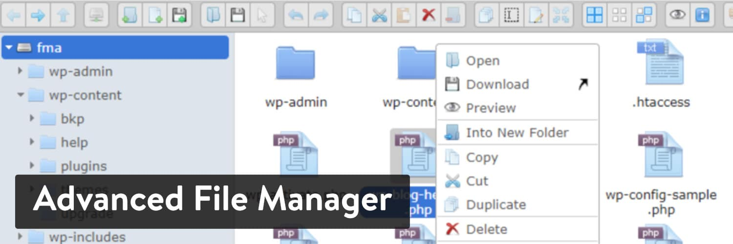 Advanced File Manager WordPress plugin