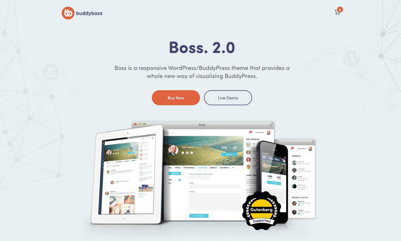 BuddyBoss skärmdump