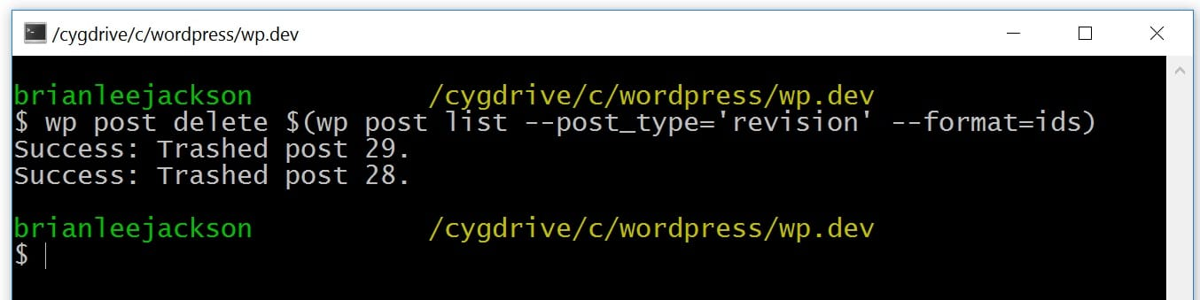 WP-CLI ta bort WordPress-revideringar