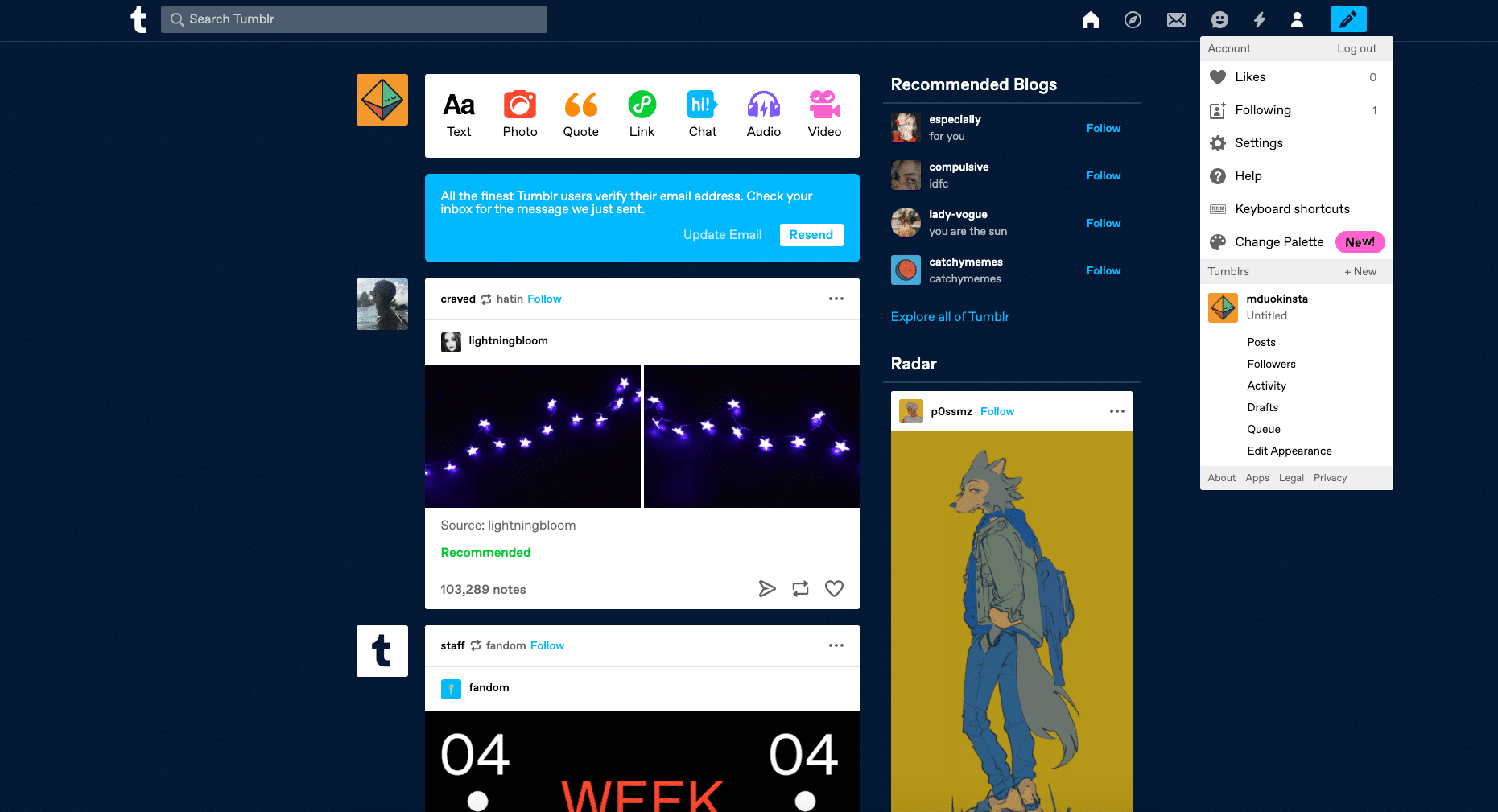 Instrumentpanel för Tumblr