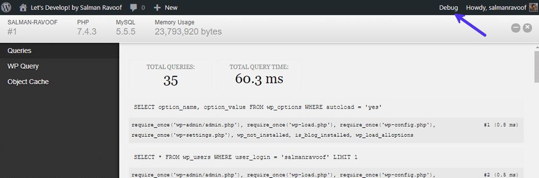 """Menyn """"Debug"""" i WordPress adminfält"""