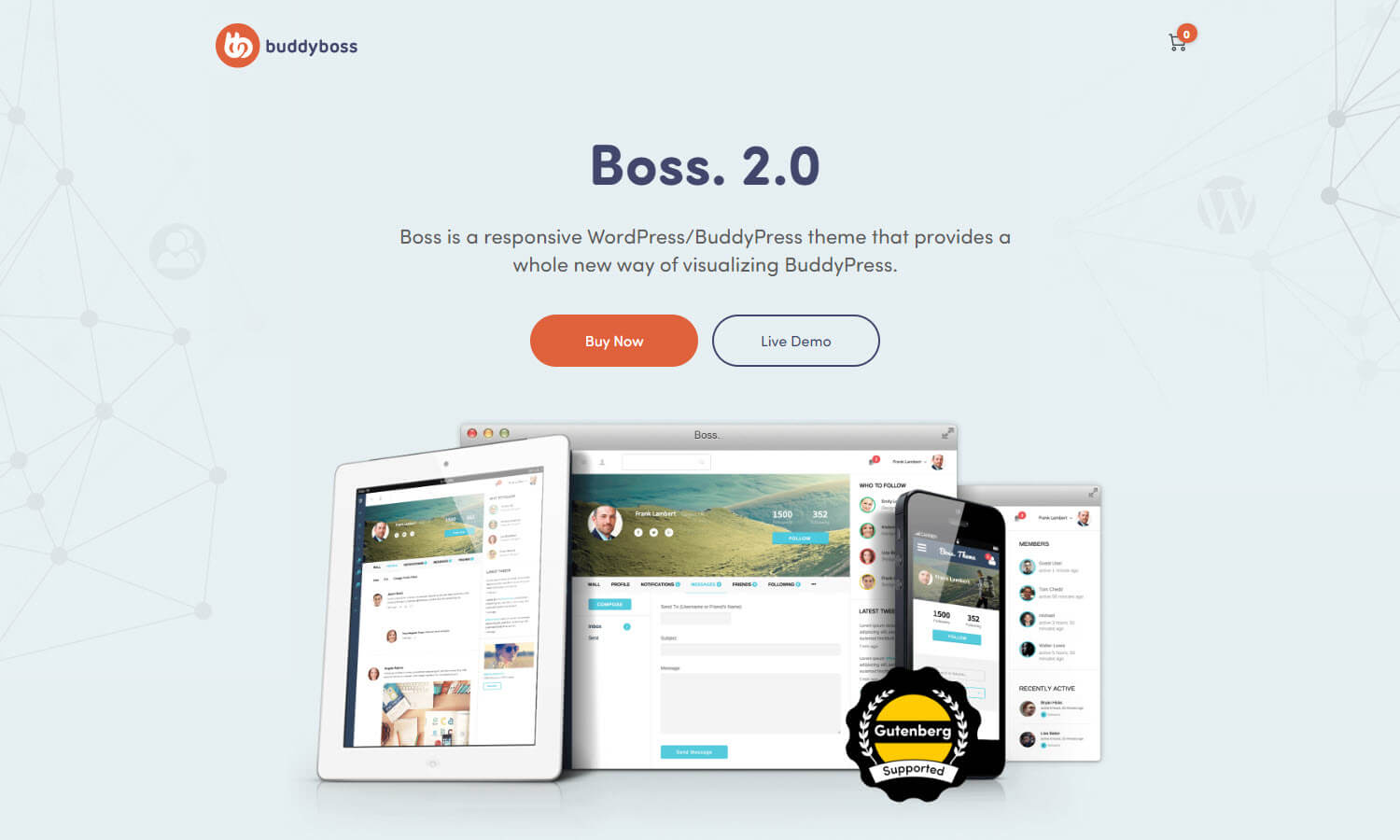 BuddyBoss screenshot
