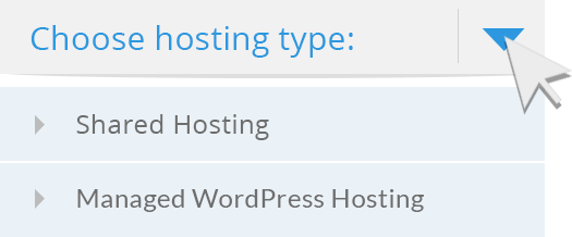choose hosting