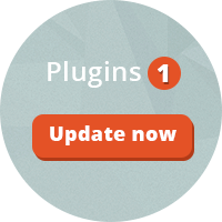 plugin update support