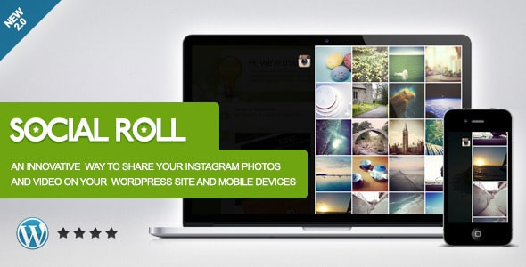 Social Role-Instagram For WordPress