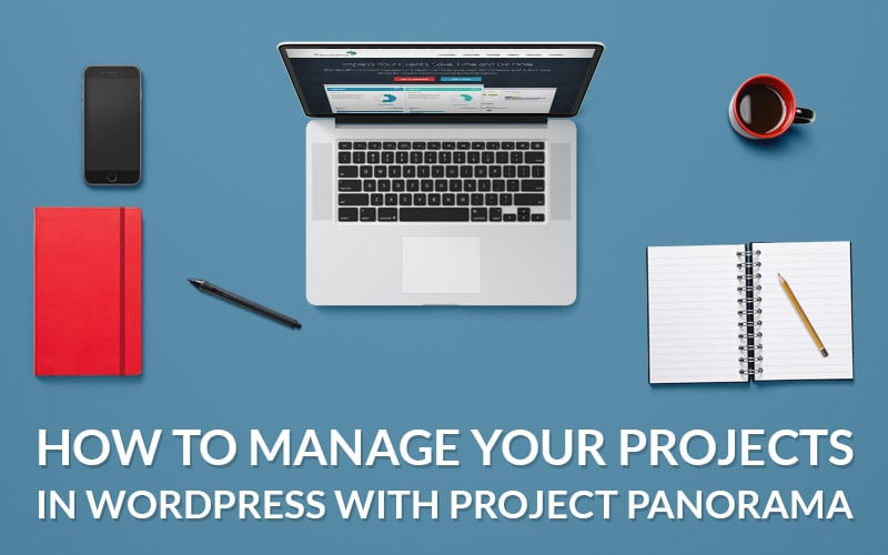 How to Manage Your Projects With Project Panorama WP Plugin