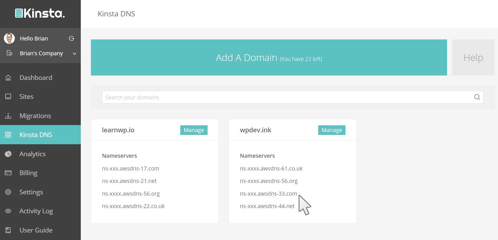 Premium DNS nameservers