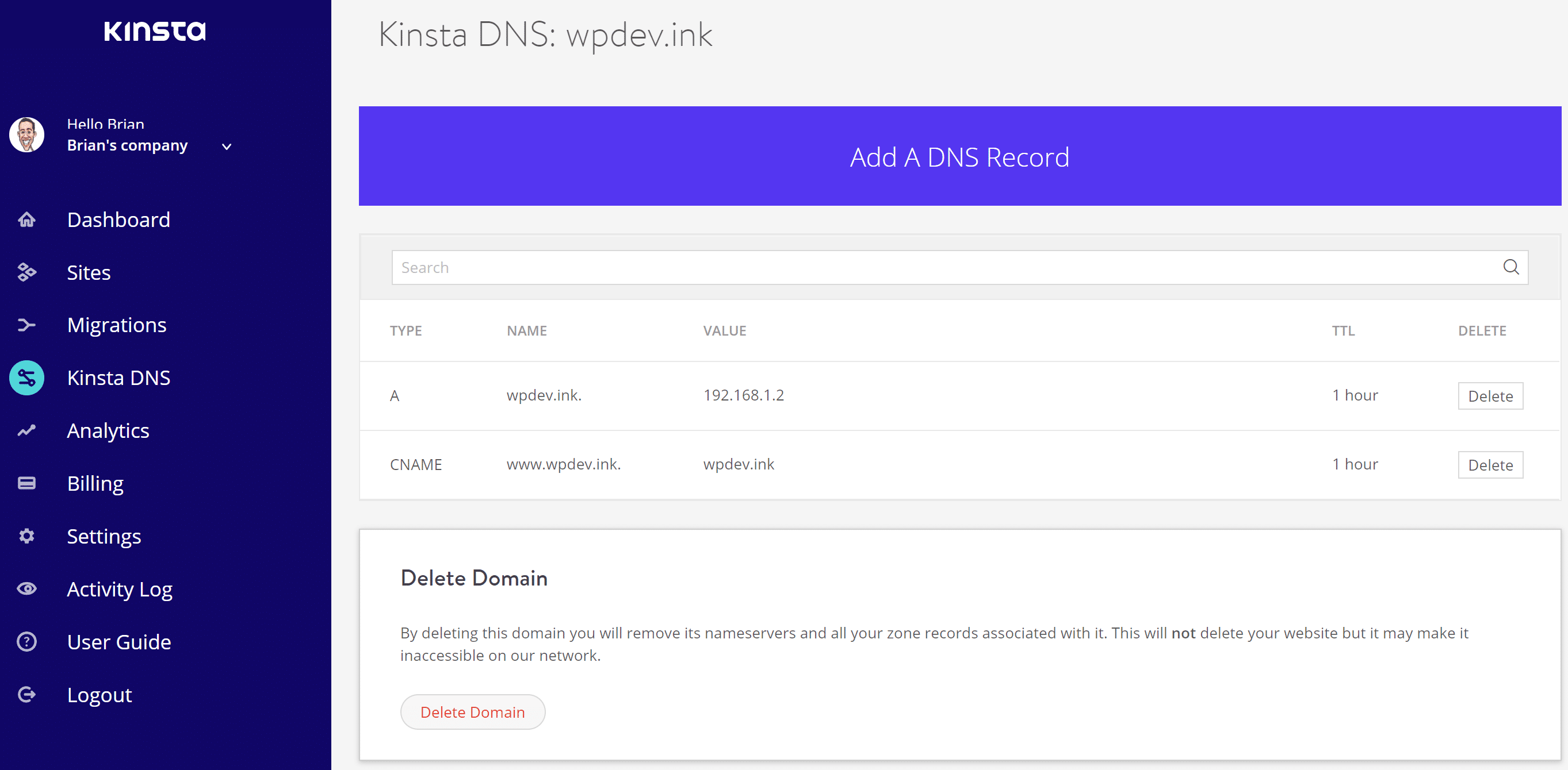 How to Point Your Domain or DNS Kinsta