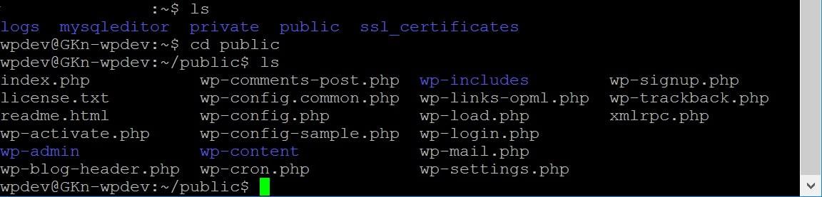 Exécution des commandes SSH dans PuTTY.