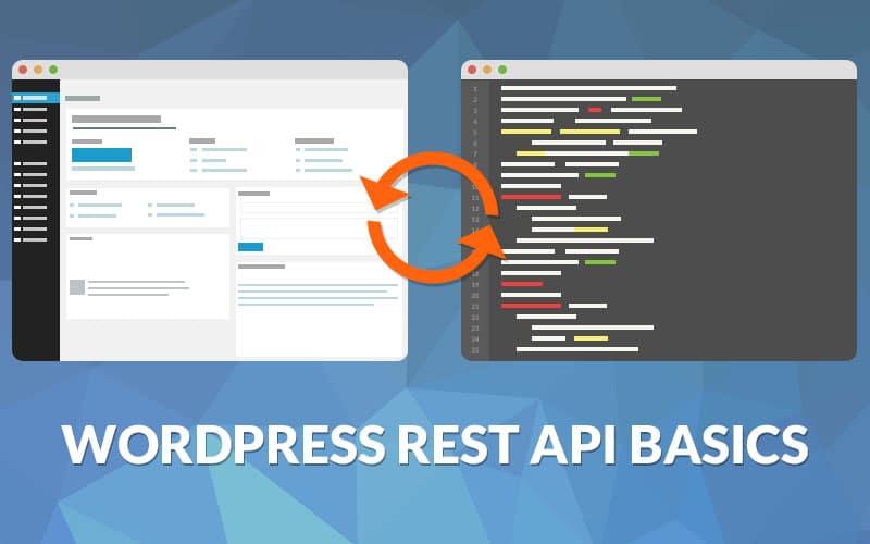 WordPress REST API Basics - Kinsta