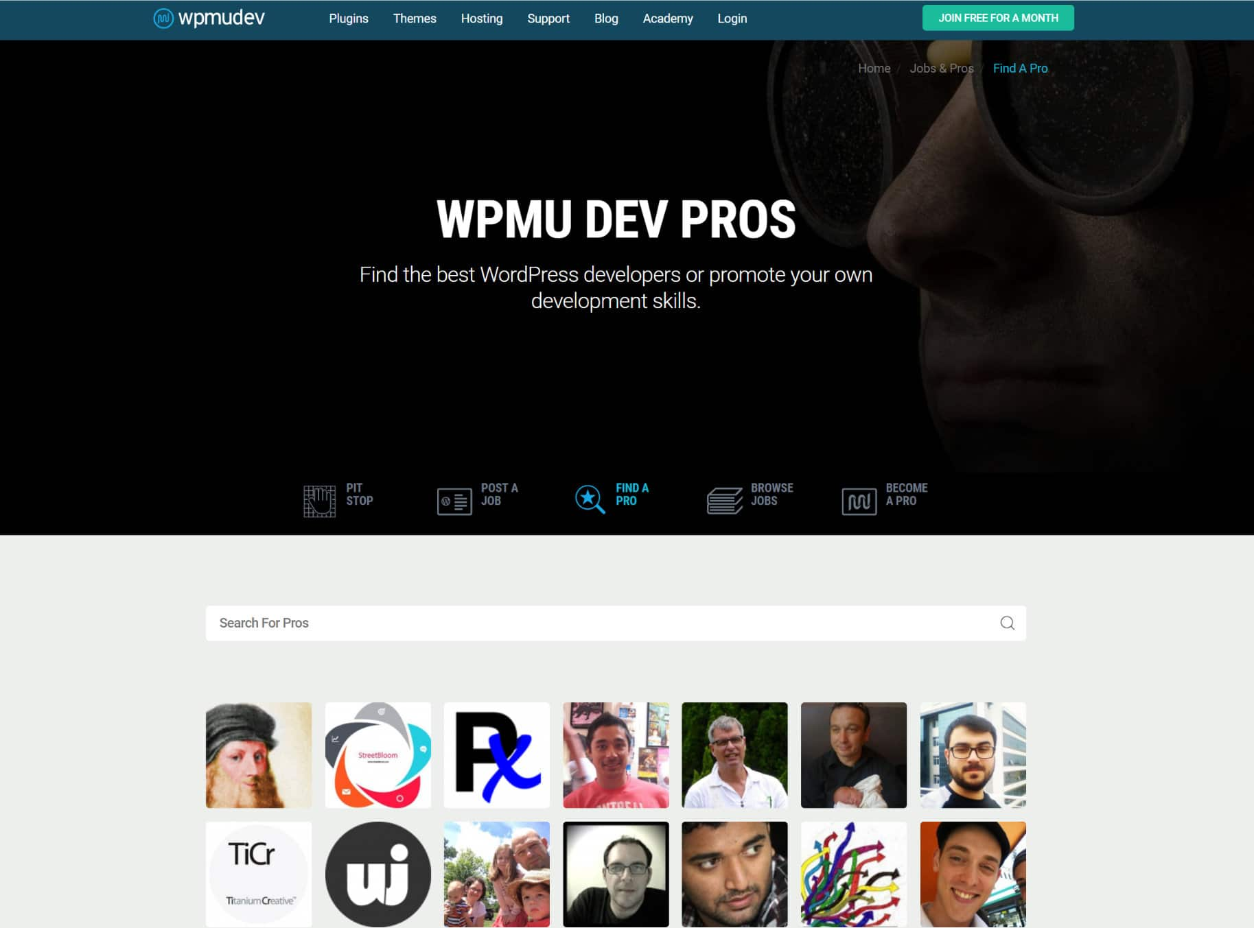 WordPress jobs at WPMU DEV Pros