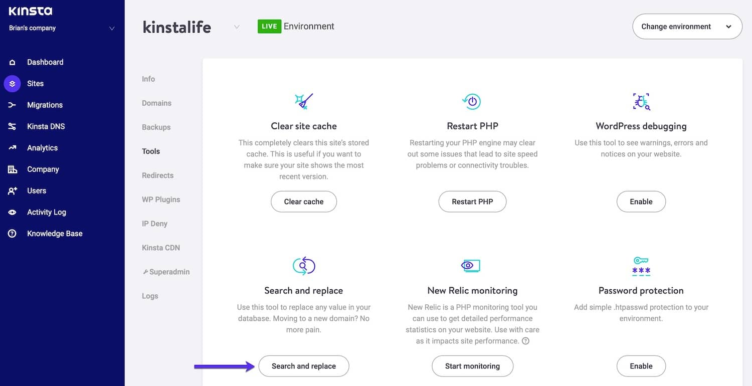 Kinsta's search and replace feature