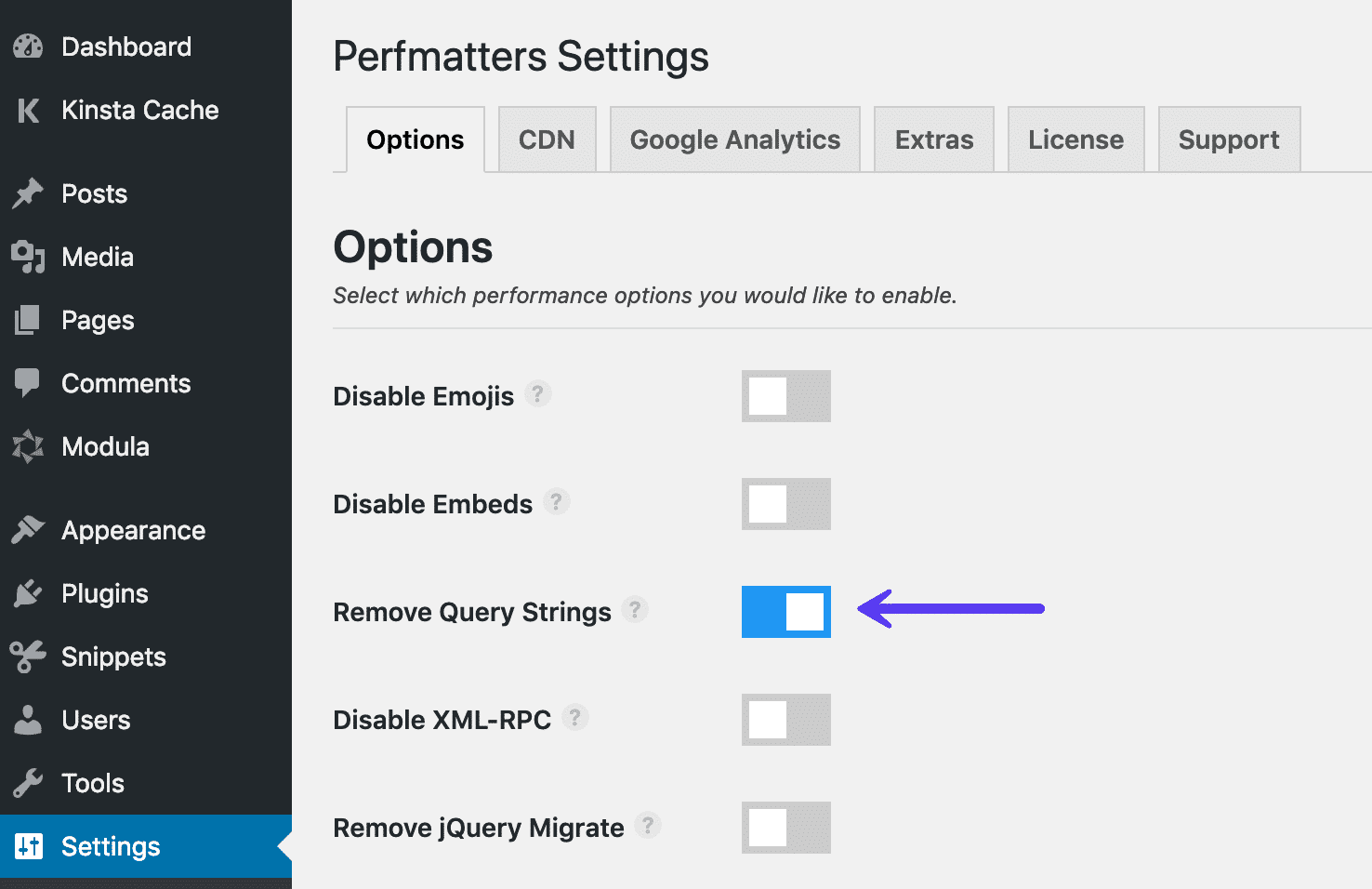 Remove query strings with Perfmatters plugin