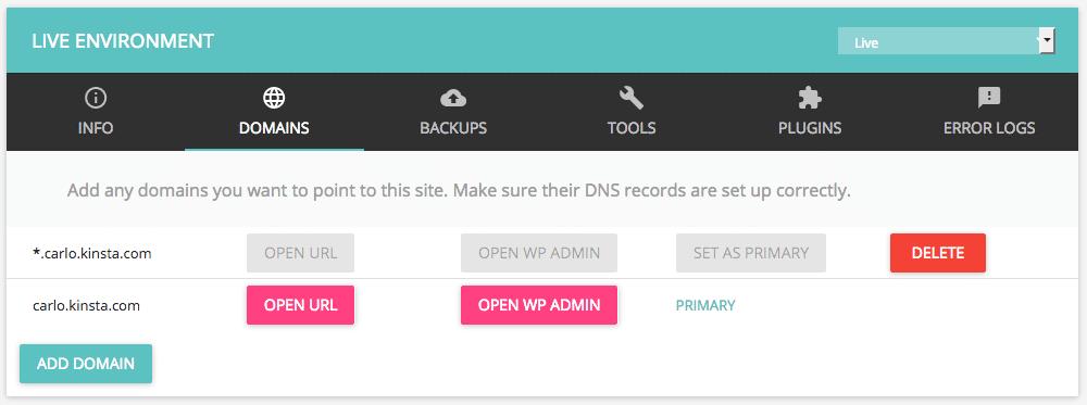 Kinsta domains tab