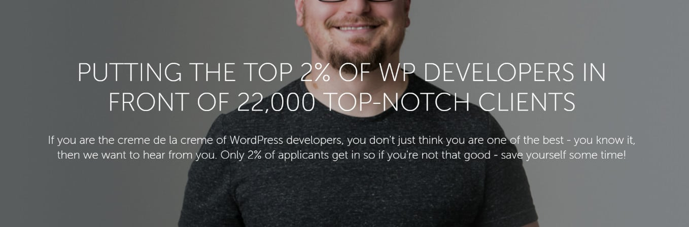 wordpress experts and developers