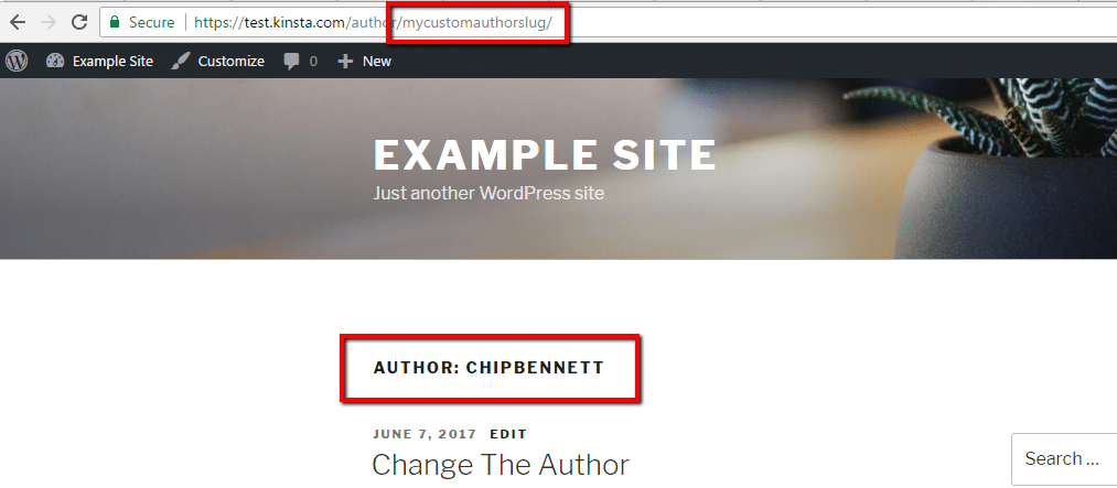 Custom author slug