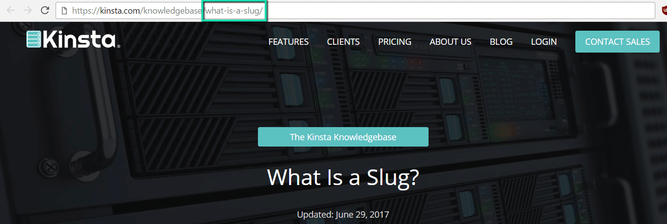 What is a WordPress Slug? (SEO and Usability Tips)
