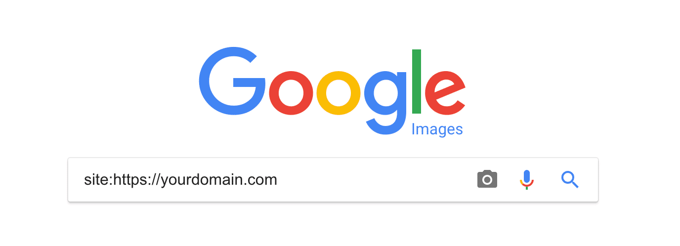 Google Image Search check indexing