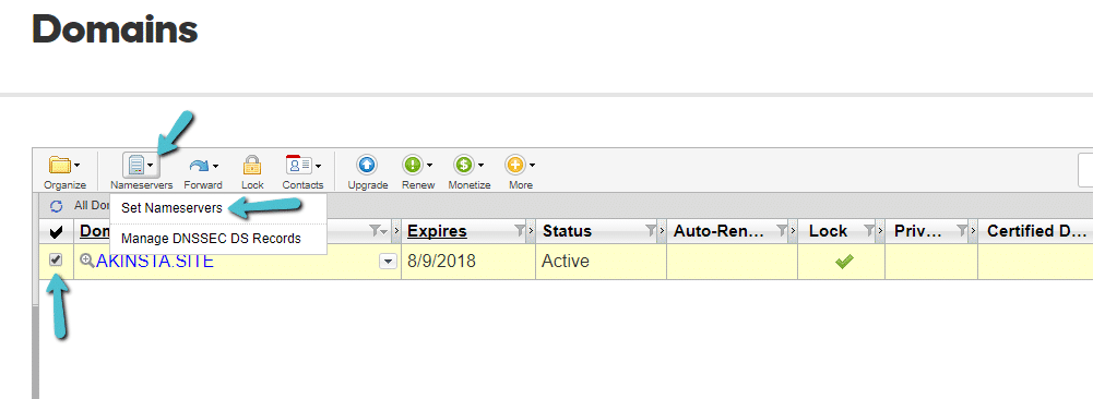 How to manage nameservers in advanced list view