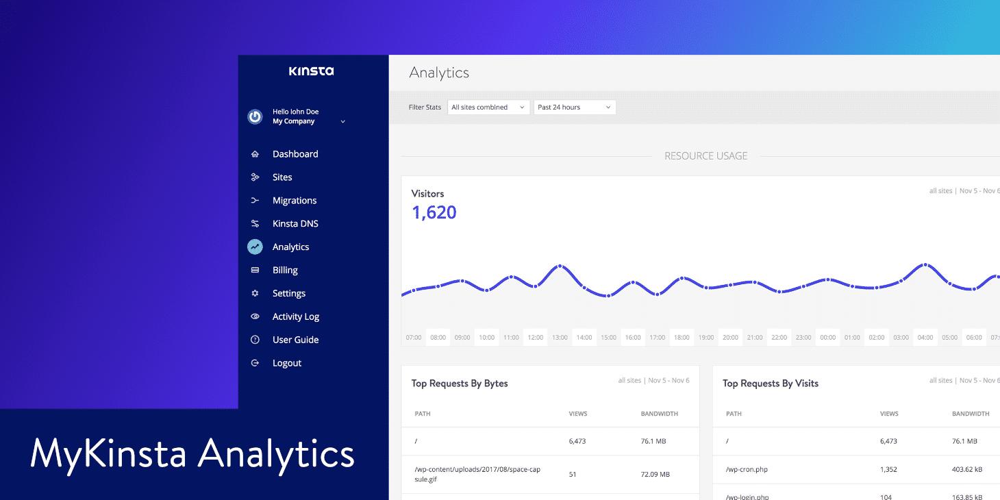 MyKinsta analytics