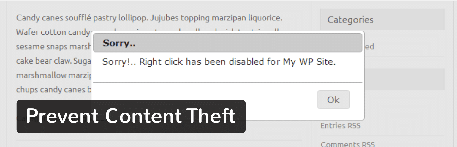 Prevent Content Theft WordPress plugin