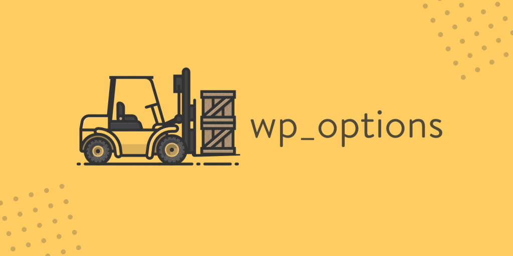 wp_options autoloaded data
