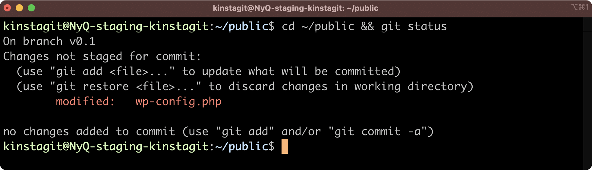 Changed files in the Kinsta staging environment.