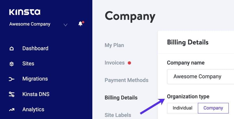 Company account in MyKinsta.