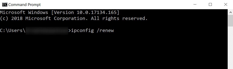 command prompt containing ipconfig /renew