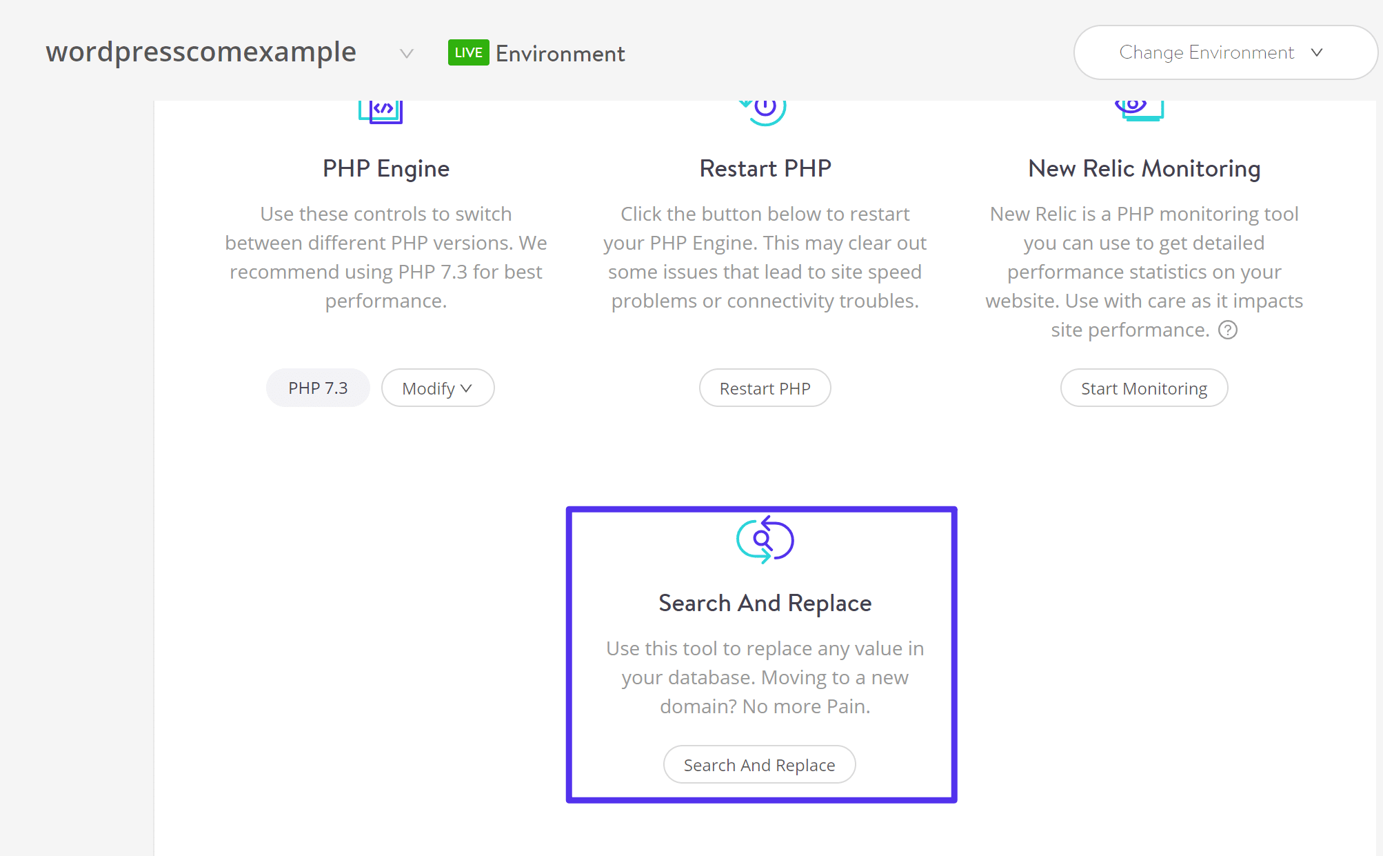 Kinsta Search And Replace tool