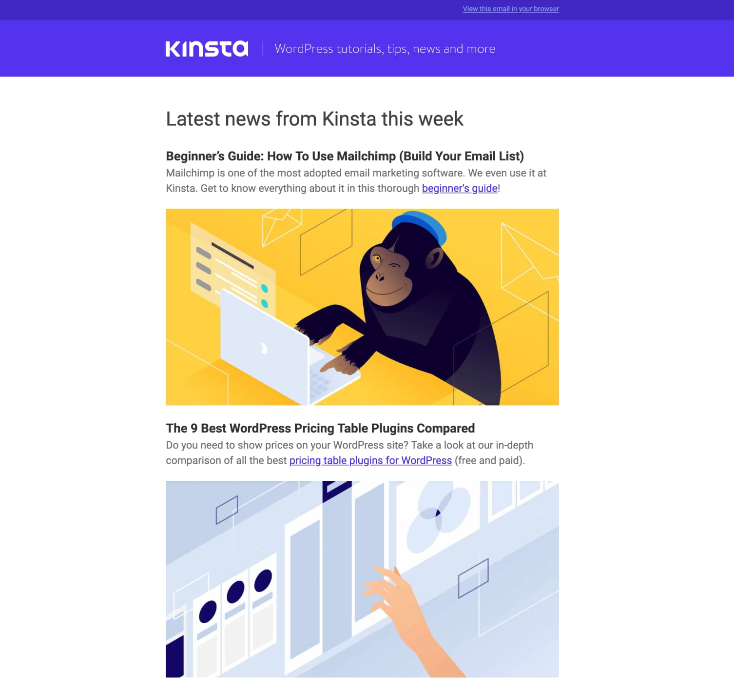 Kinsta newsletter template