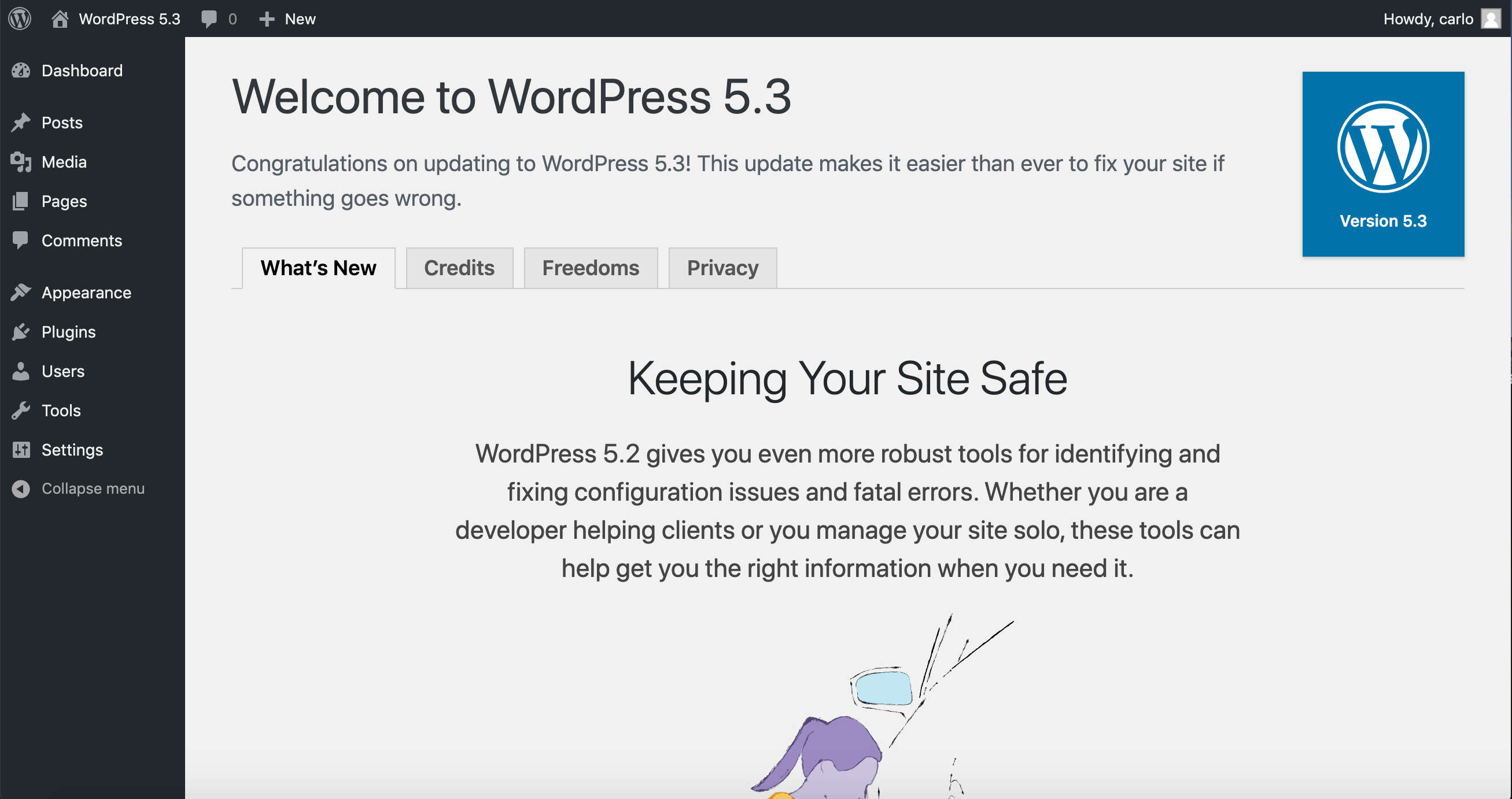 Temporary WordPress 5.3 About page