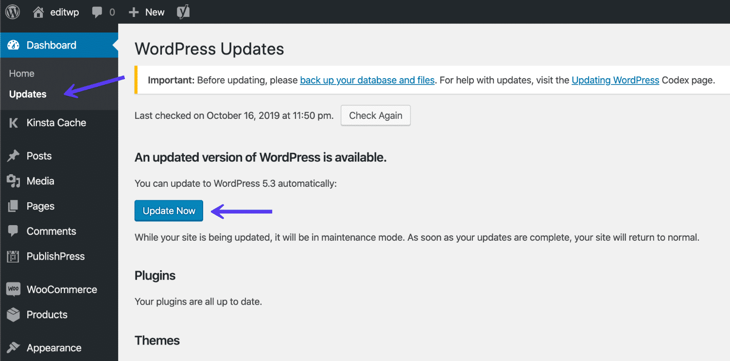 Update to WordPress 5.2 in dashboard