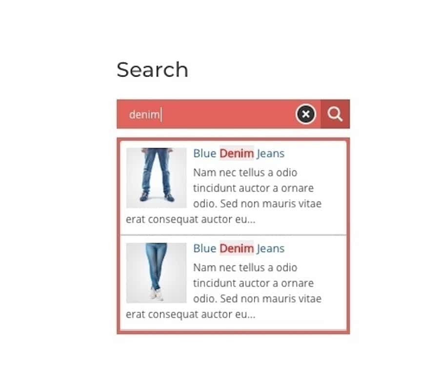 An example of a search form with keyword highlighting built by Ajax Search plugin.
