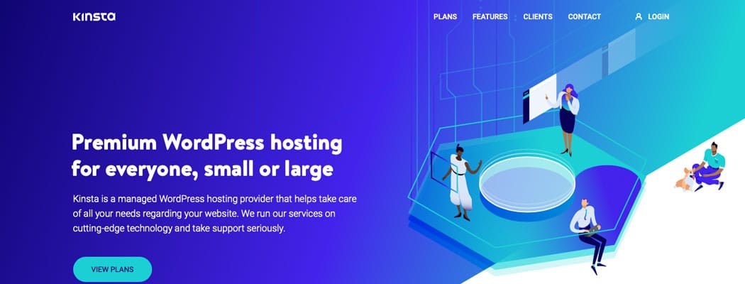 The Kinsta website