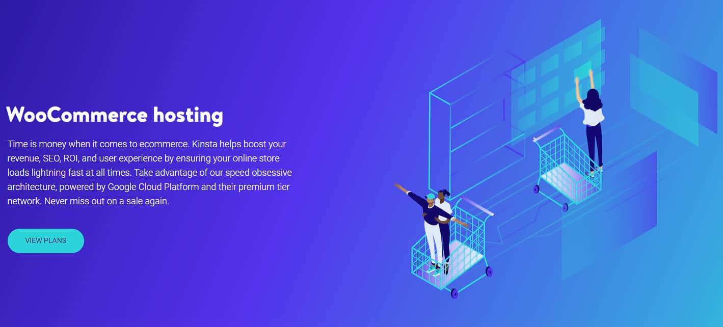 Kinsta ecommerce hosting