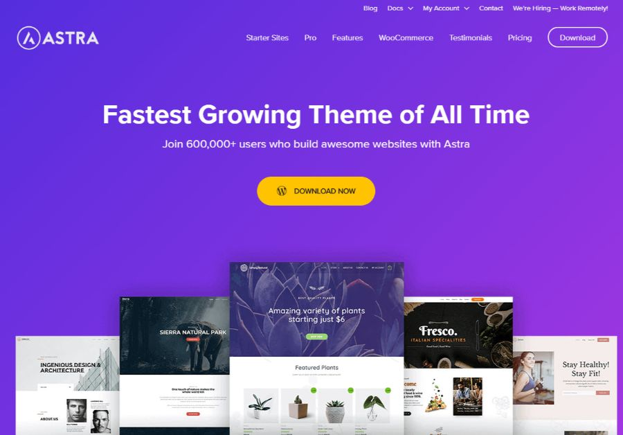 astra - WordPress membership theme