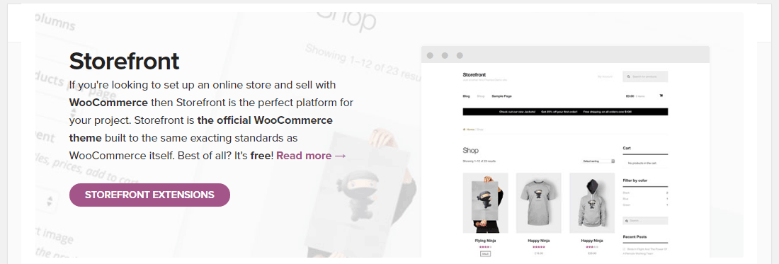 Opt for a fast WooCommerce theme (Image source: WP Rocket)