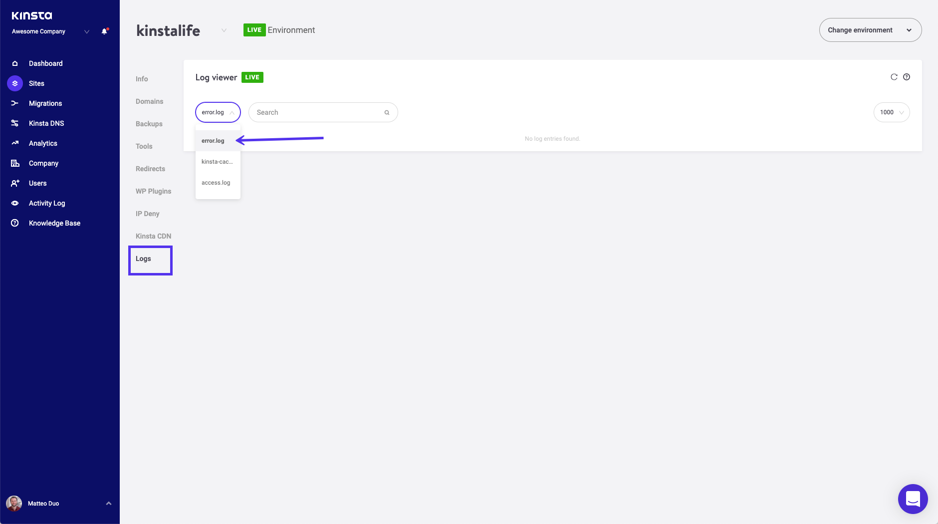 MyKinsta error log viewer