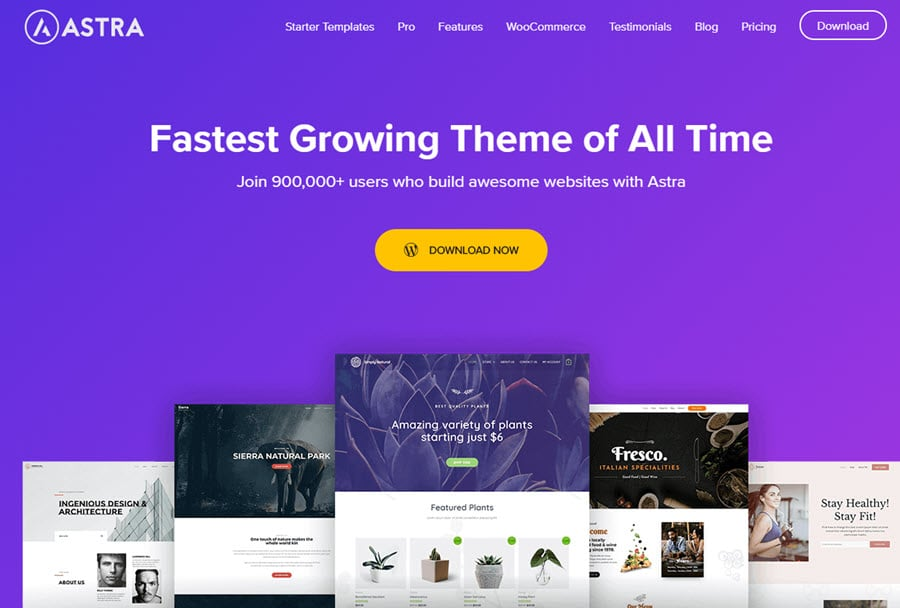 Astra WP - fastest WordPress theme