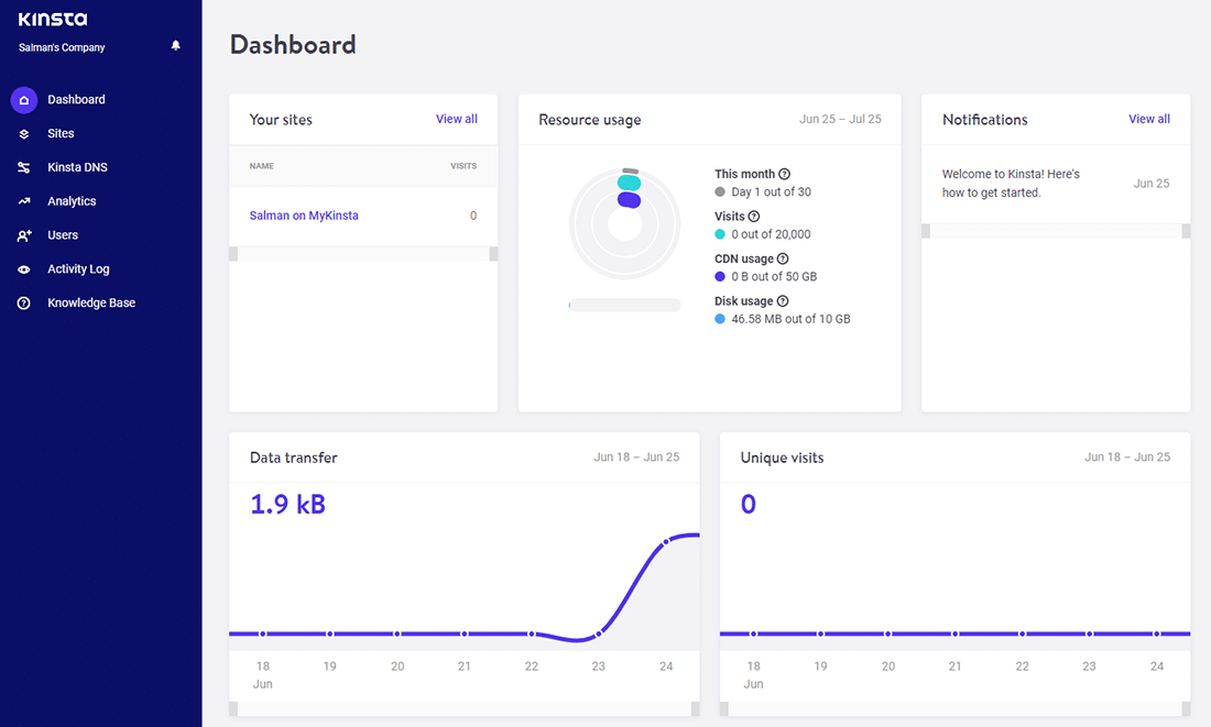 The 'Company Developer' dashboard in MyKinsta