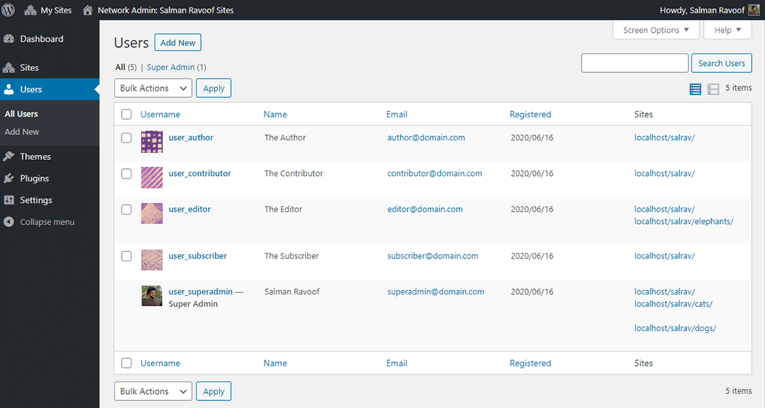 The 'Users' panel in a WordPress Multisite Network Admin dashboard