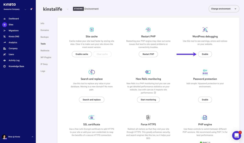 Habilita el modo de depuración de WordPress en MyKinsta