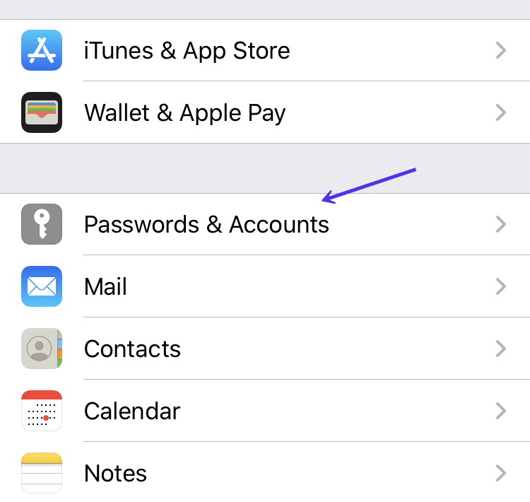 Password and Accounts options in iOS