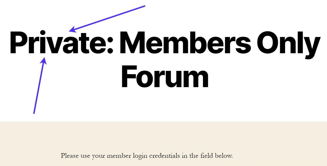 Frontend da página privada