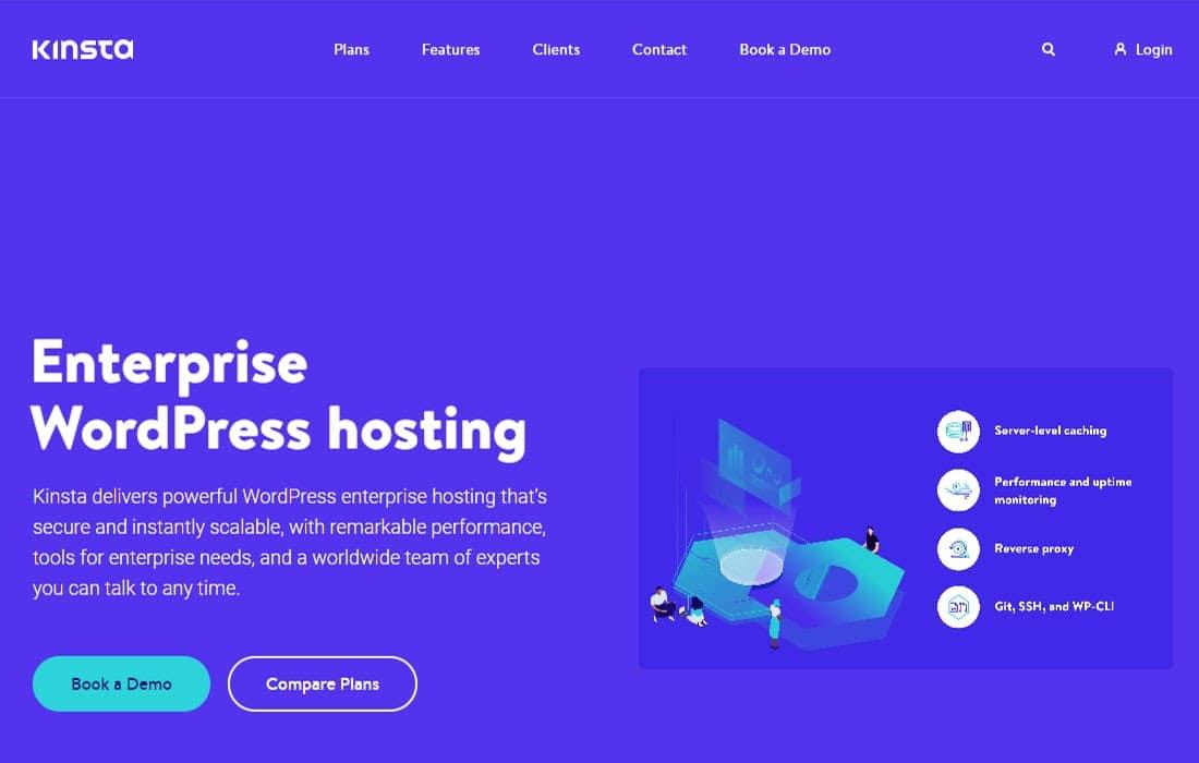 Kinsta Enterprise Grade Hosting