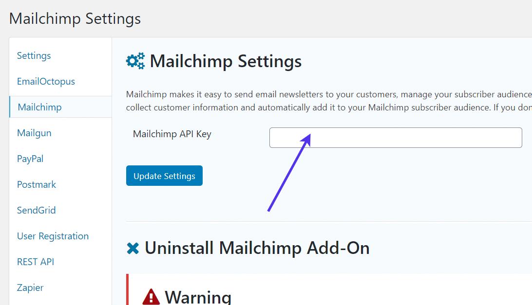 Campo chave da API do Mailchimp