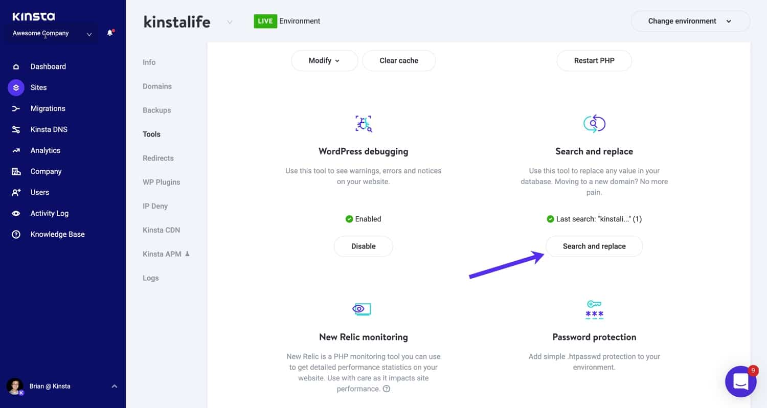 The Search and Replace tool in MyKinsta