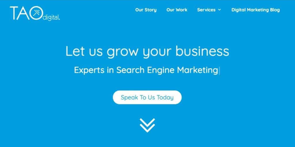 Tao Digital Marketing's website homepage